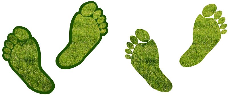 Carbon footprinting and composting