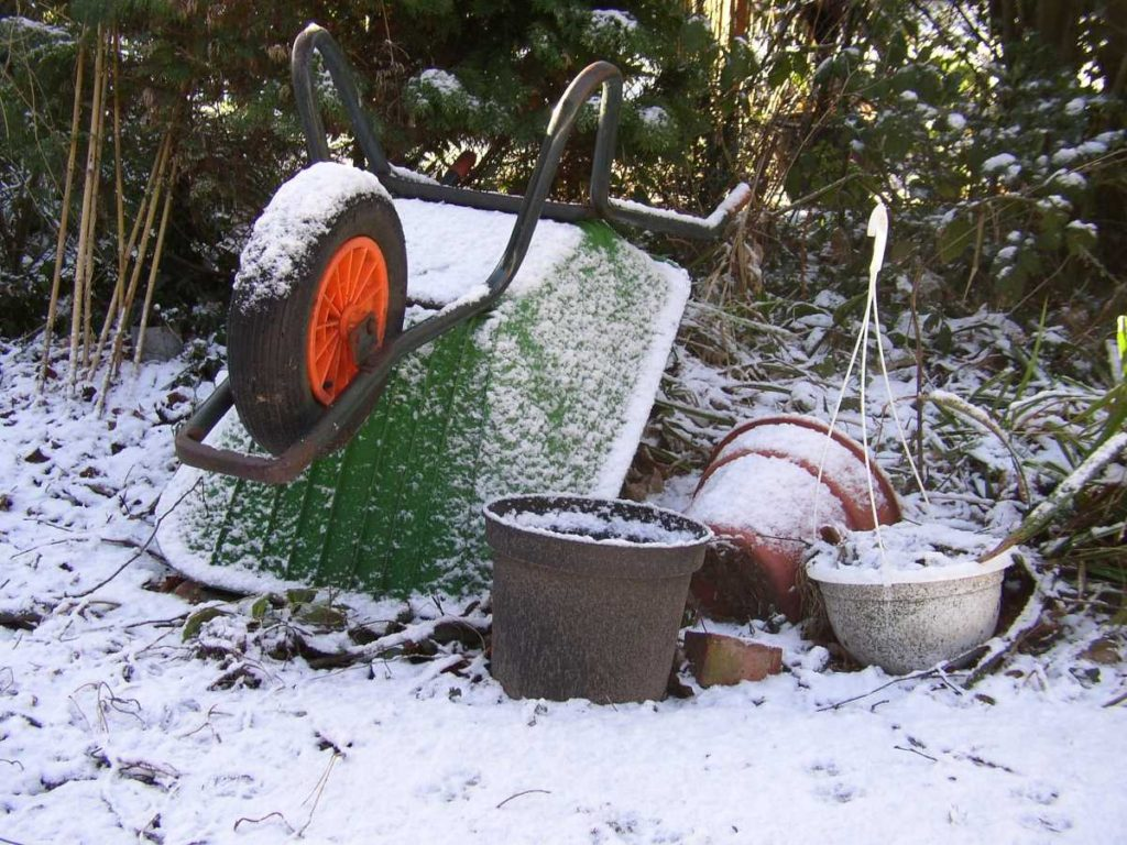 Gardening in the winter