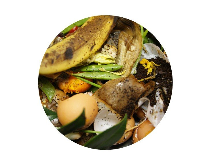 Buzz about bokashi composting